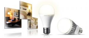 lampadine per l'ambiente